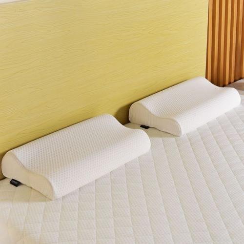 "10"" inch Queen Foam Topper with Pillows"
