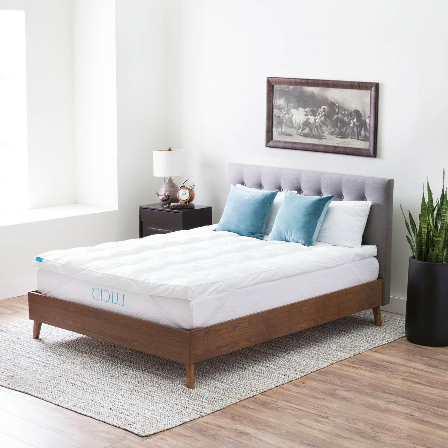 Lucid Bed Soft and Plush - WARRANTY