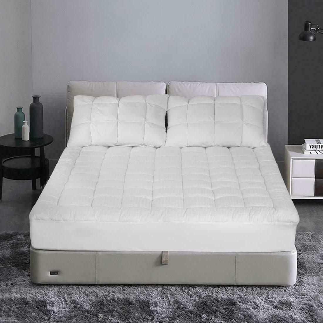Protector Bed